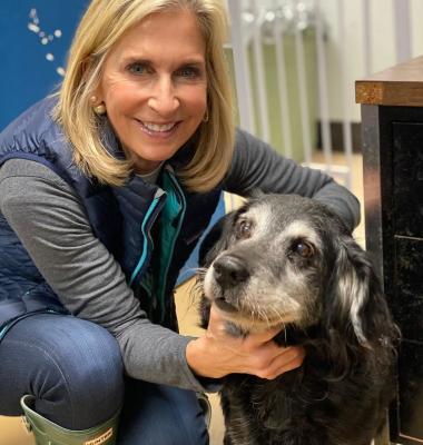 BISSELL Pet Foundation jetzt auch international – Bis jedes Tier ein Zuhause hat